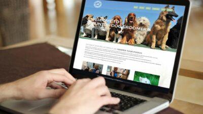 4 Alasan Memilih Jasa Pembuatan Website dan SEO Untuk Bisnis Online