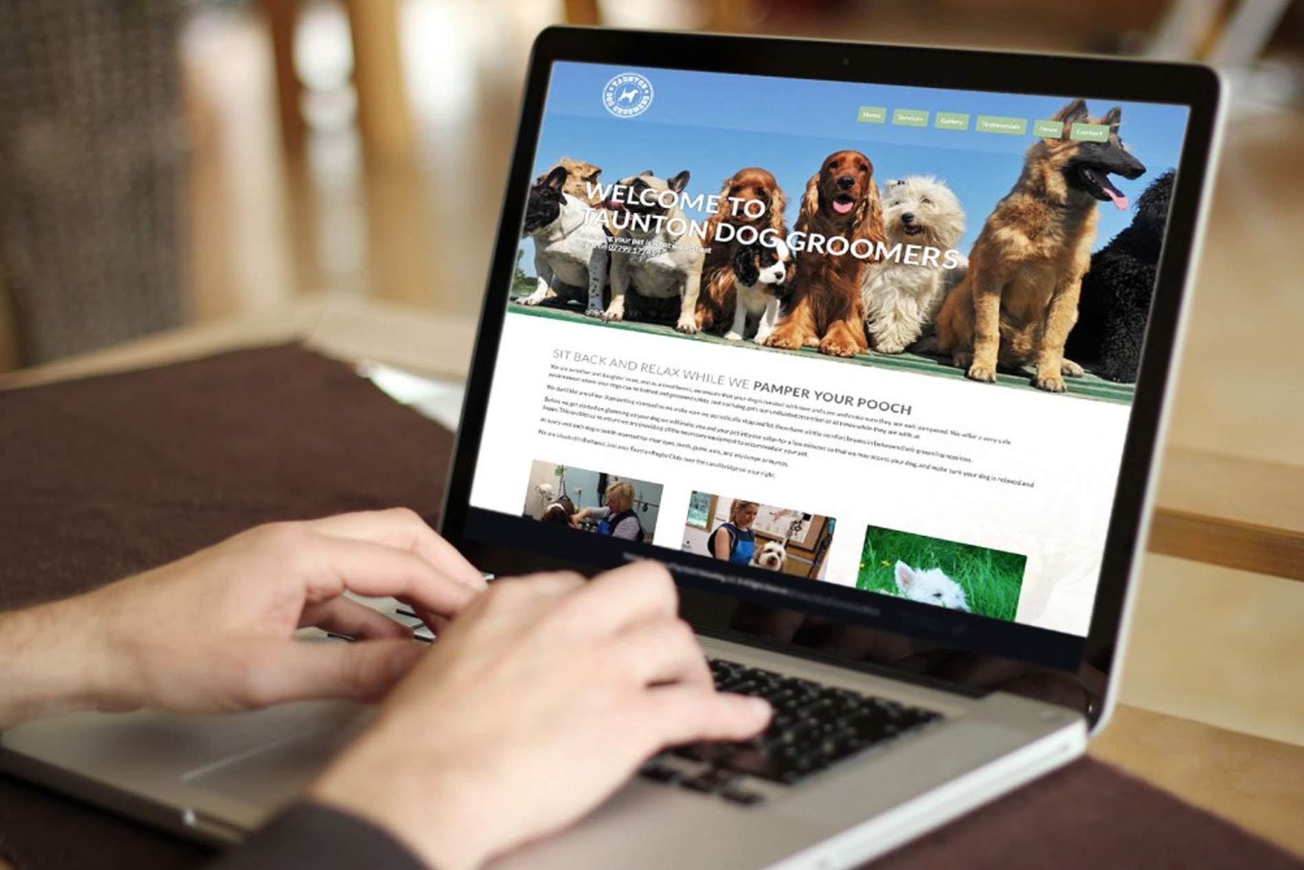 4-Alasan-Memilih-Jasa-Pembuatan-Website-dan-SEO-Untuk-Bisnis-Online