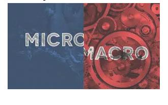 Ekonomi mikro dan makro adalah: definisi, perbedaan, contoh