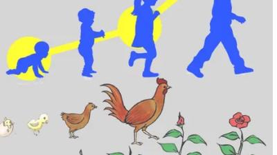 Makhluk hidup: definisi, sifat, kebutuhan, pengelompokan